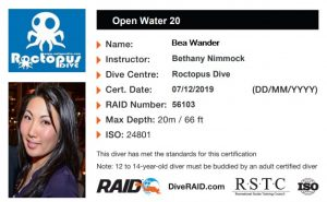 Water Open 20 Scuba Diving License - with Roctopus in Koh Tao